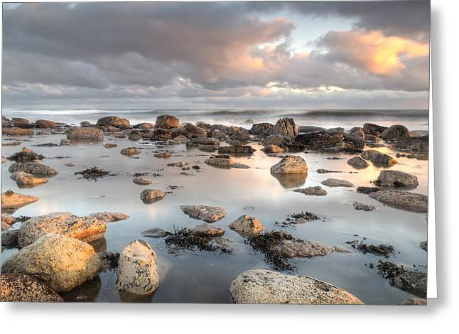 Farne Islands Greeting Cards - Holy Island Reflection Greeting Card by Chris Frost