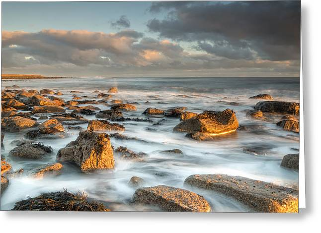 Farne Islands Greeting Cards - Holy Islands Sunkissed Rocks Greeting Card by Chris Frost