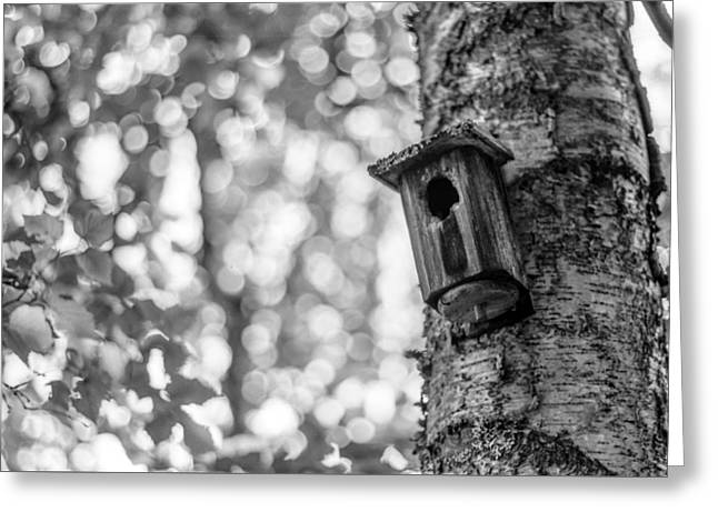 Pioneer Homes Greeting Cards - Home Is Where The Heart Is Greeting Card by Aaron Aldrich