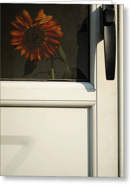 Screened Porchs Greeting Cards - Home Is Where the Sun Is Greeting Card by Luke Moore