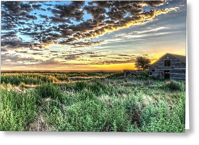 Home On The Range Greeting Card by Corey Cassaw