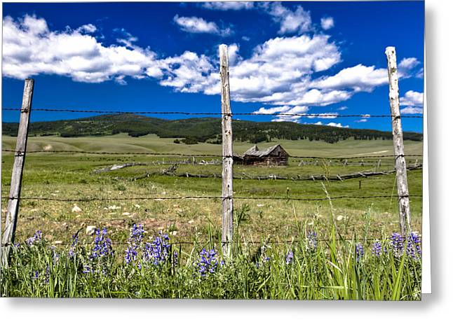 For Sale By Owner Greeting Cards - Home on the Range Greeting Card by John Harwood