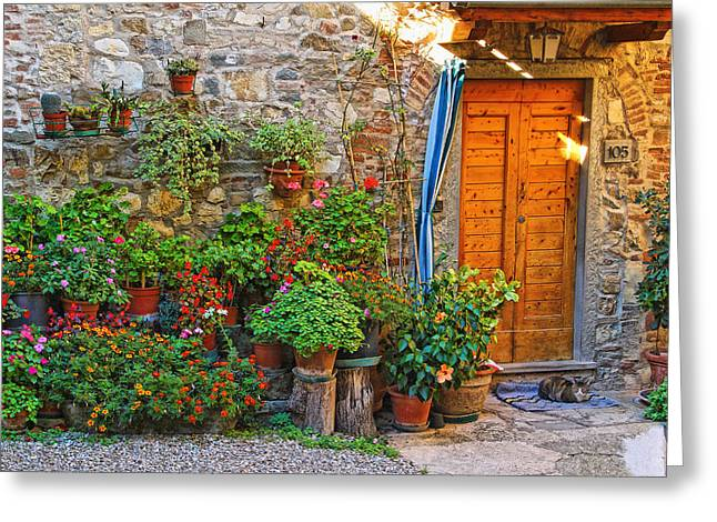 Chianti Greeting Cards - Home With Flowers and Cat in Chianti Greeting Card by Greg Matchick