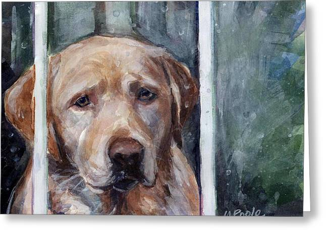 Yellow Dog Paintings Greeting Cards - Homebody Greeting Card by Molly Poole