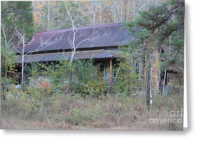 Tin Roof Greeting Cards - Homes with History Greeting Card by Barbara Dalton