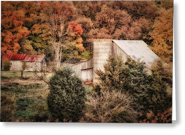 Tennessee Barn Digital Art Greeting Cards - Homestead in the Hills Greeting Card by Mary Timman