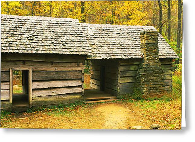 Log Cabins Photographs Greeting Cards - Homestead Log Cabin In A Forest, Great Greeting Card by Panoramic Images