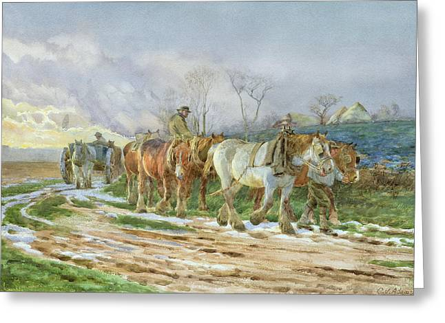 Snowy Evening Greeting Cards - Homeward Bound Greeting Card by Charles James Adams