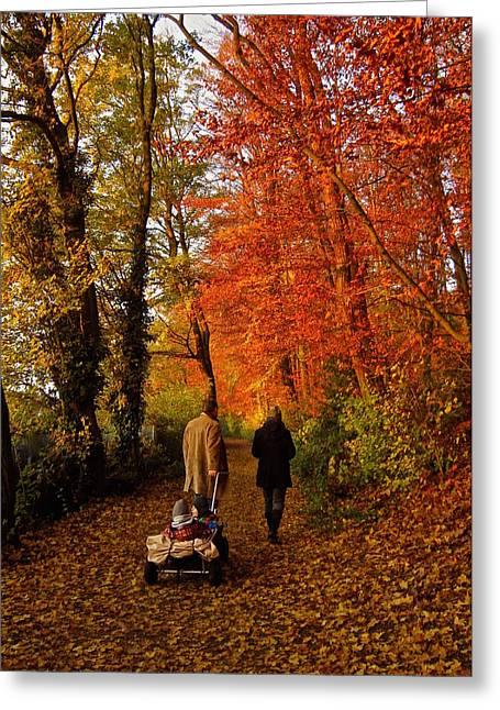 Autumn Scenes Greeting Cards - Homeward Bound Greeting Card by Richard Cummings