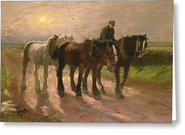 Horse Farm Greeting Cards - Homeward Greeting Card by Harry Fidler
