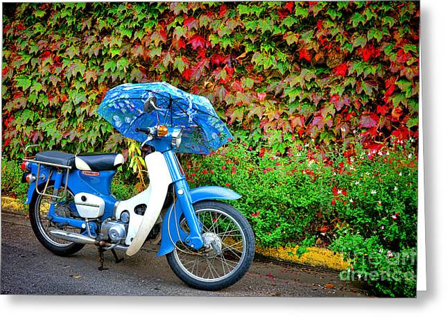 Handlebar Greeting Cards - Honda with Umbrella Greeting Card by Olivier Le Queinec