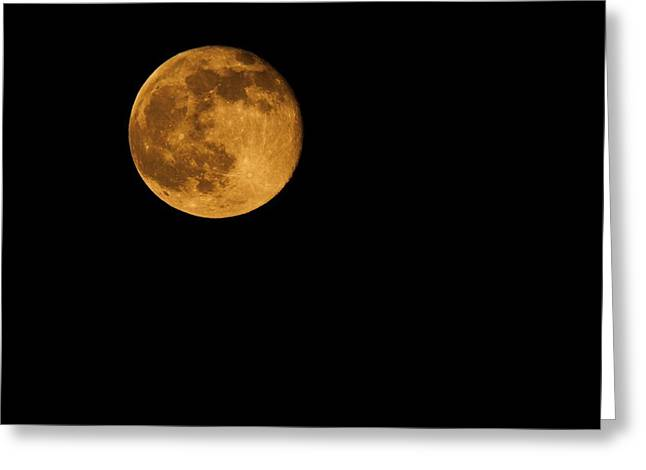 Man In The Moon Greeting Cards - Honey Moon Full Moon 2014 Greeting Card by Dan Sproul