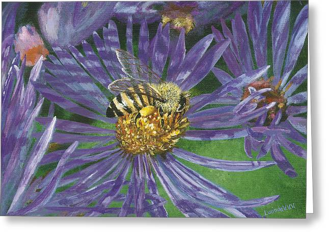 Honeybee On Purple Aster Greeting Card by Lucinda V VanVleck