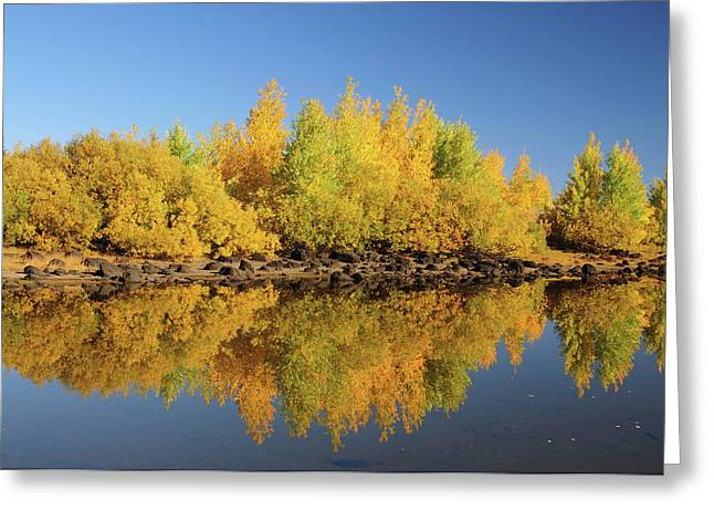 Honeymoon Lake Reflections, Steens Greeting Card by Michel Hersen