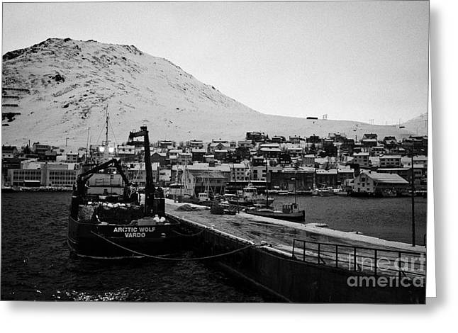 Scandanavian Greeting Cards - Honningsvag harbour and pier with crab fishing boats finnmark norway europe Greeting Card by Joe Fox
