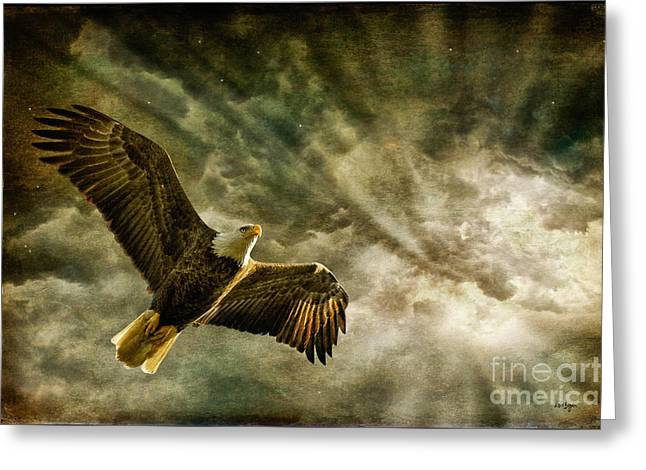 Eagle Greeting Cards - Honor Bound In Blue Greeting Card by Lois Bryan