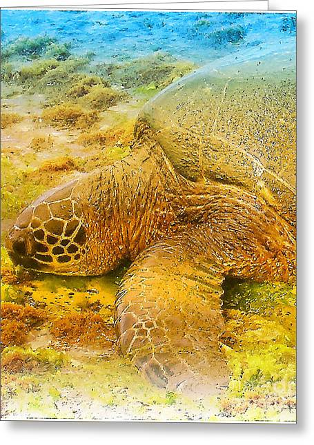 Laniakea Beach Greeting Cards - Honu  Sea Turtle Greeting Card by Dorlea Ho
