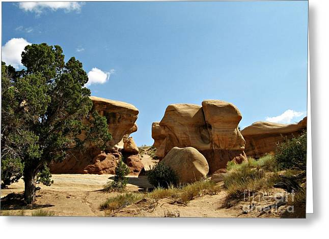 Holes In Sandstone Greeting Cards - Devils Garden - Hoodoo Pathway Greeting Card by Sheryl Young