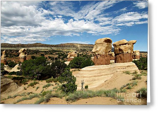 Holes In Sandstone Greeting Cards - Devils Garden - Hoodoos and Straight Cliffs Greeting Card by Sheryl Young