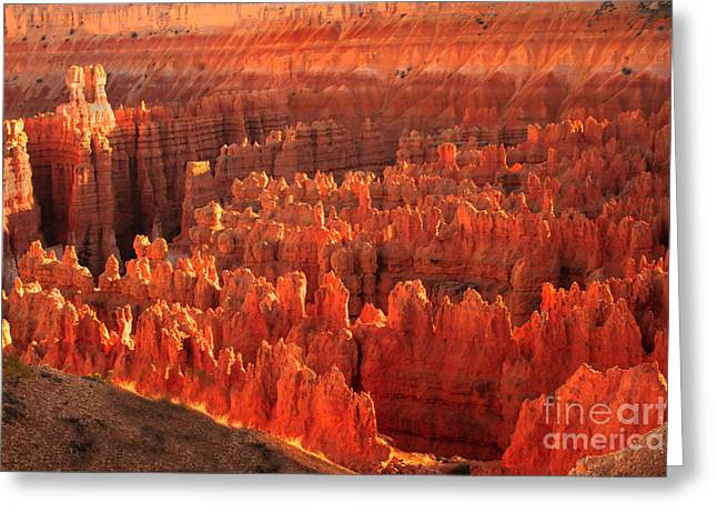 Grand Circle Greeting Cards - Hoodoos Basin Greeting Card by Robert Bales