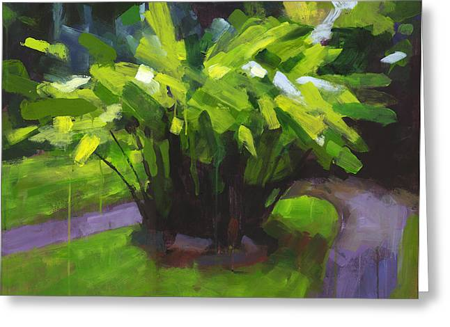 Tropical Landscape Greeting Cards - Hoomaluhia Path Greeting Card by Douglas Simonson