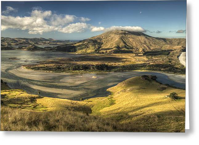 Tidal Photographs Greeting Cards - Hoopers Inlet And Cape Saunders New Greeting Card by Colin Monteath