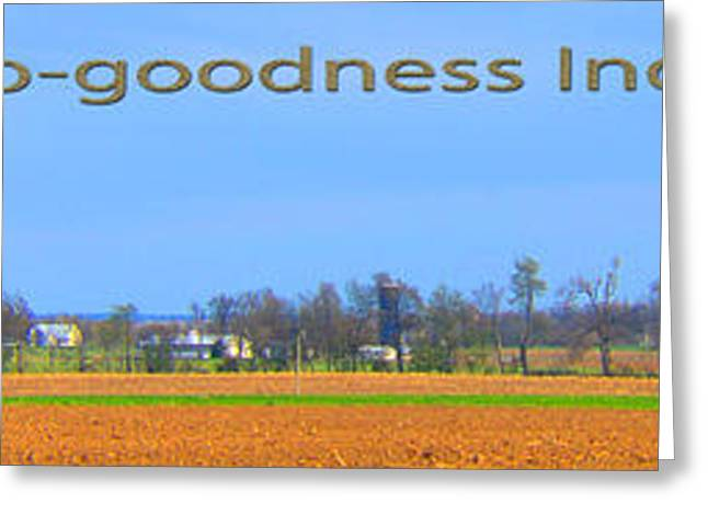 Basketballs Greeting Cards - Hoosier Landscape Greeting Card by Tina M Wenger