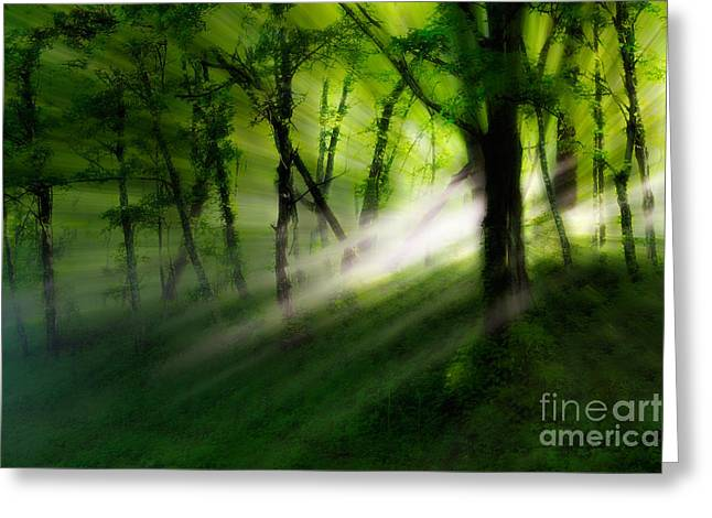 Fog Mist Mixed Media Greeting Cards - Hope Lights Eternal - a Tranquil Moments Landscape Greeting Card by Dan Carmichael