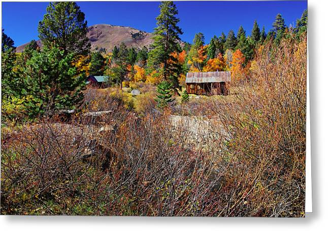 Rustic Cabin Greeting Cards - Hope Valley Fall Colors Greeting Card by Scott McGuire