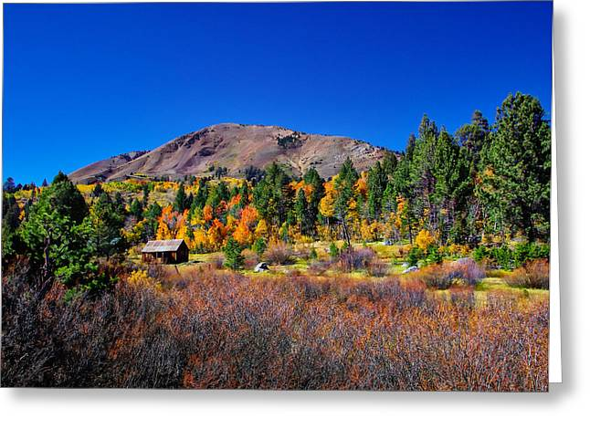 Rustic Cabin Greeting Cards - Hope Valley Rustic Barn Fall Color Greeting Card by Scott McGuire