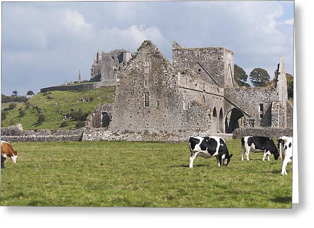 Hores Greeting Cards - Rock of Cashel and Hore Abbey Greeting Card by Dennis Ludlow