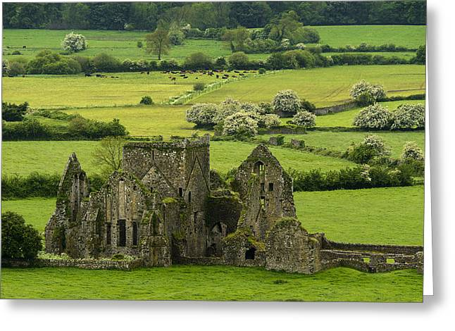 Hores Greeting Cards - Hore Abbey Ireland Greeting Card by Dick Wood