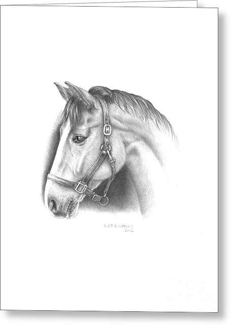 Ranch Drawings Greeting Cards - Horse-2 Greeting Card by Lee Updike