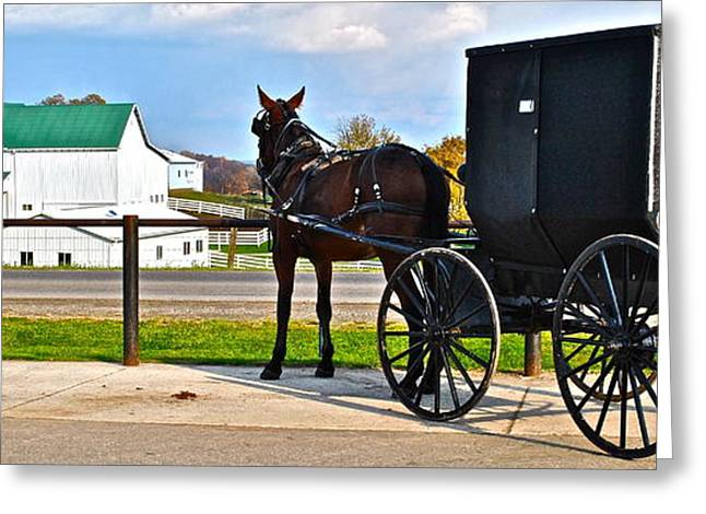 Quaker Greeting Cards - Horse and Buggy and Farm Greeting Card by Frozen in Time Fine Art Photography