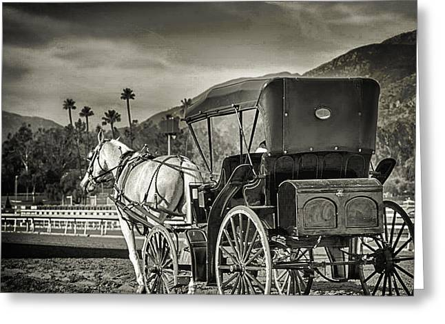 Horse And Buggy Greeting Card by Camille Lopez