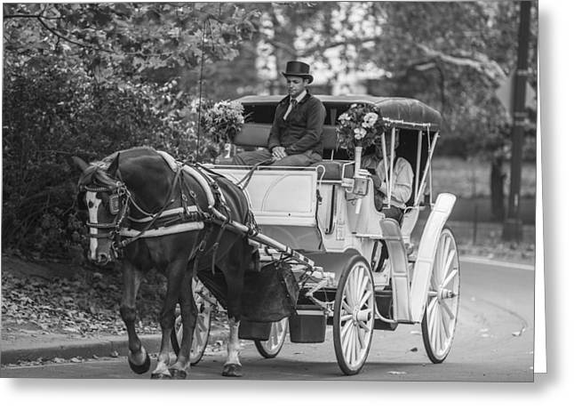 Horse And Buggy Central Park  Greeting Card by John McGraw