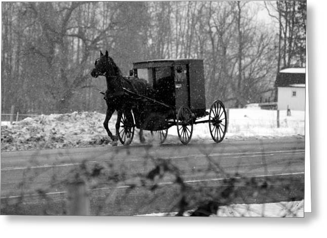 Horse And Buggy Greeting Cards - Horse and Buggy Greeting Card by Cody Burnett