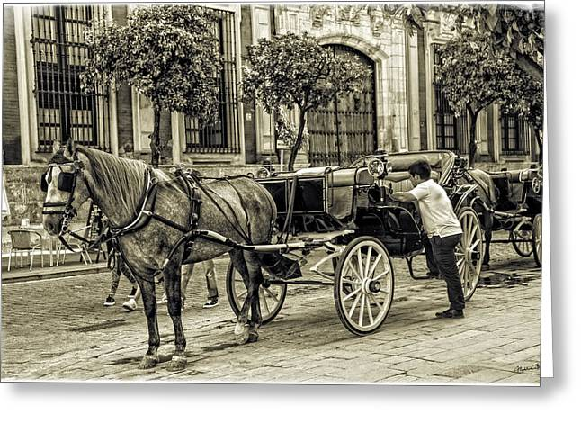 Horse Buggy Greeting Cards - Horse and Buggy in Sevilla - Spain Greeting Card by Madeline Ellis