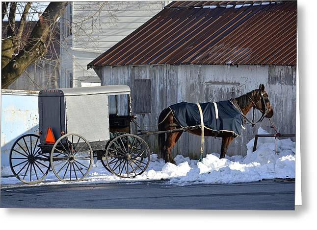 Horse And Buggy Greeting Cards - Horse and Buggy Parked Greeting Card by Tana Reiff