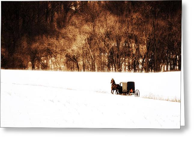 Babylon Greeting Cards - Horse and Buggy Greeting Card by Vicki Jauron