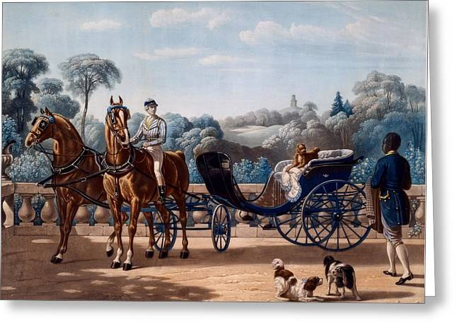 Spaniel Greeting Cards - Horse And Carriage, First Half C19th Greeting Card by Henri d