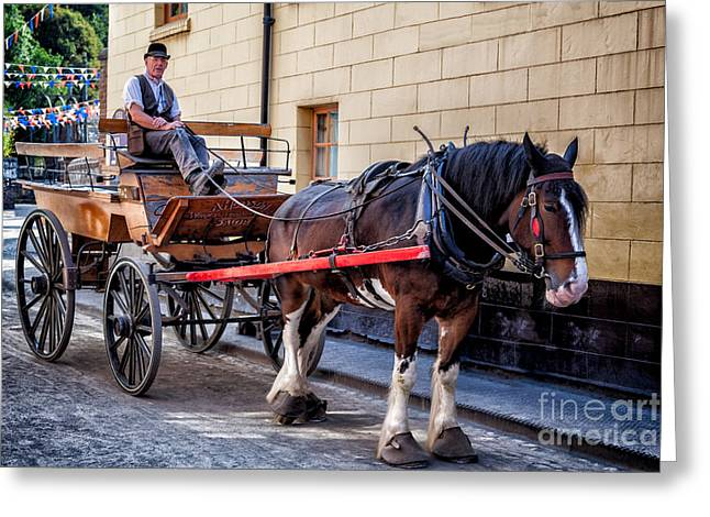 Horseman Greeting Cards - Horse And Cart Greeting Card by Adrian Evans