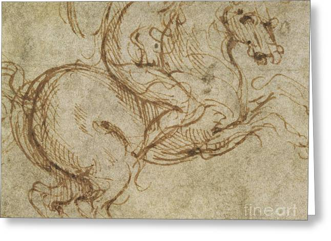 Sketch Greeting Cards - Horse and Cavalier Greeting Card by Leonardo da Vinci