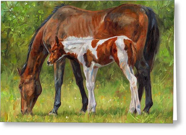 Hoses Greeting Cards - Horse and Foal Greeting Card by David Stribbling