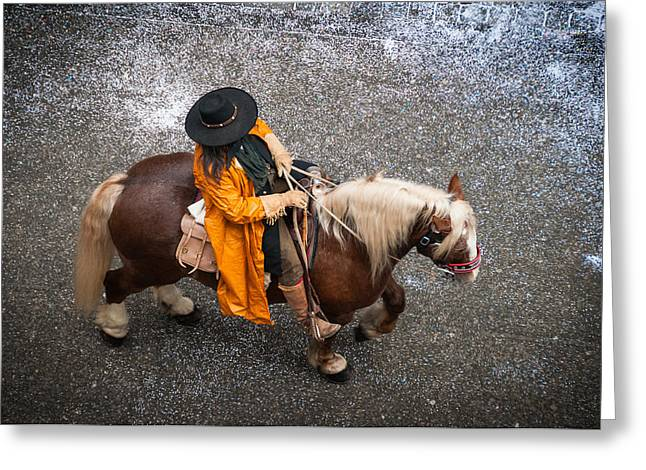 Orange Coat Greeting Cards - Horse and rider from above Greeting Card by Matthias Hauser