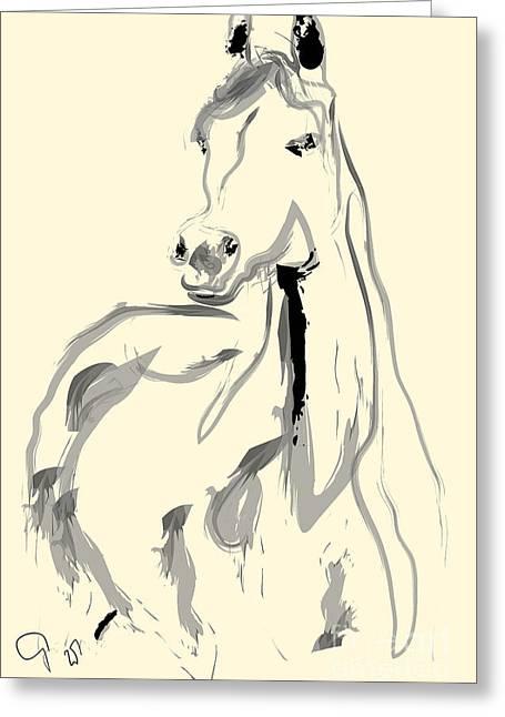 Colorful Greeting Cards - Horse - Arab Greeting Card by Go Van Kampen