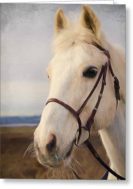Runner Greeting Cards - Horse Art - Beauty Is A Light Greeting Card by Jordan Blackstone