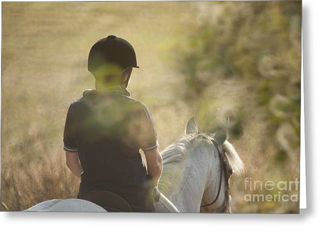 Third Estate Greeting Cards - Horse Back  Greeting Card by Graham Foulkes