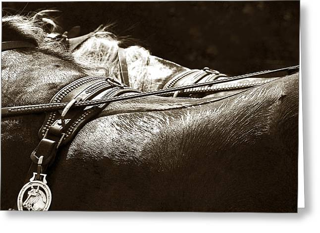Judy Wood Digital Greeting Cards - Horse Brass Greeting Card by Judy Wood