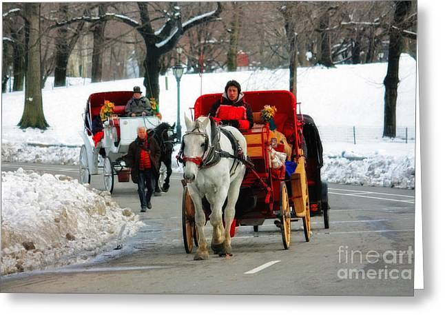 Horse And Cart Greeting Cards - Horse Carriage Rides in the Snow in Central Park Greeting Card by Nishanth Gopinathan